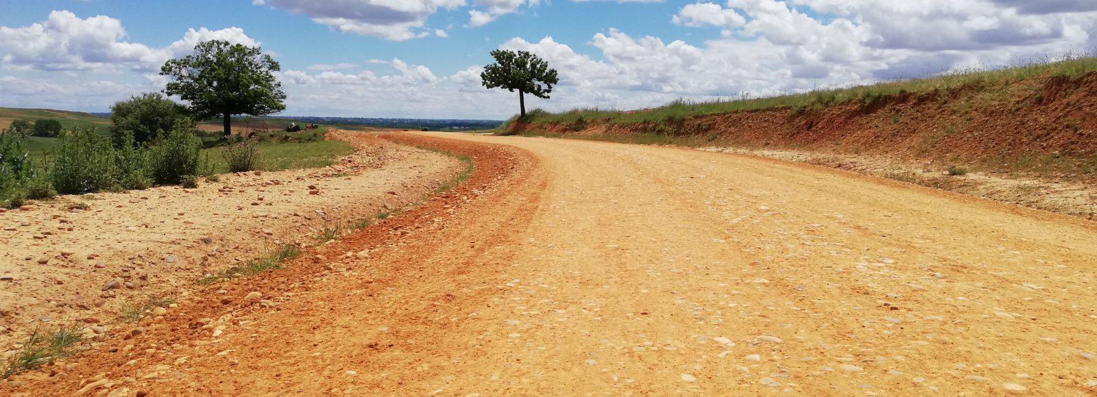 Cammino di santiago.Pierangela Vallese