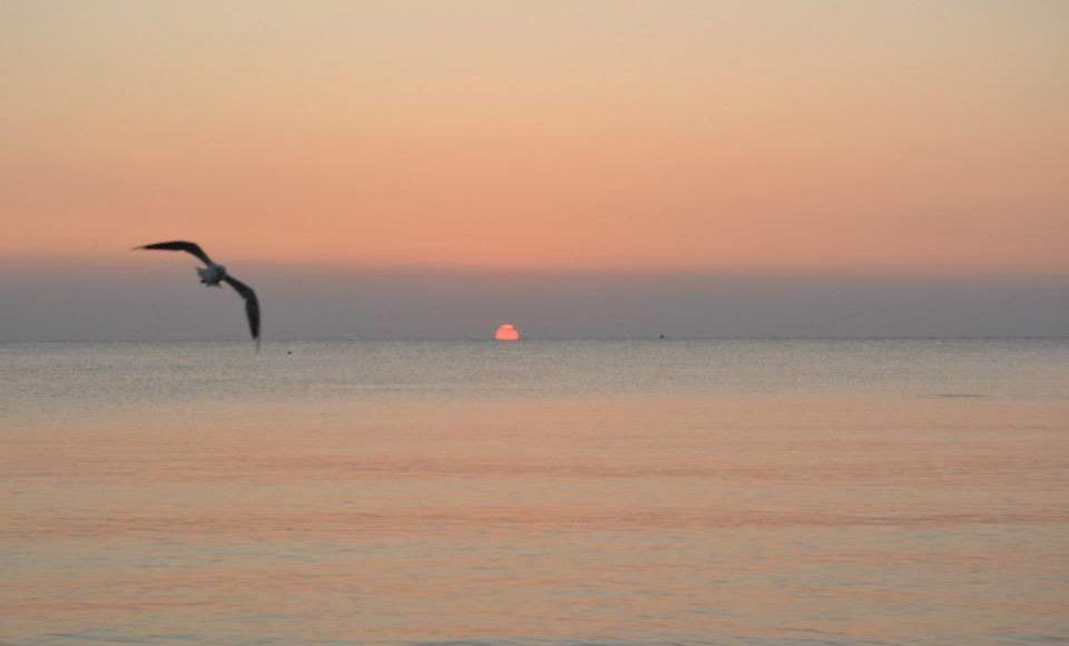 Ringraziamento al mattino della vita. foto di Pierangela Vallese